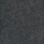 12x20 or 12x30 Grey Carpet